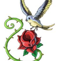 Bird and red rose tattoo design