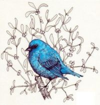Bluebird on the twig of mistletoe