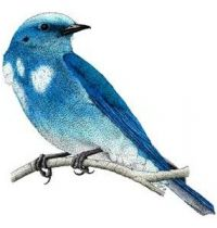 Blue bird tattoo design