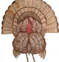 Brown turkey tattoo design