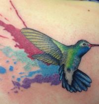 Hummingbird tattoo in colours