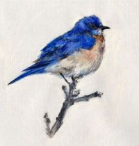 Small bluebird tattoo design