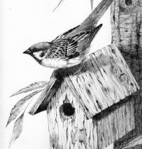 Sparrow on bird house tattoo design