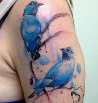 Two birds in blue colour tattoo