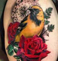Yellow bird with red roses tattoo