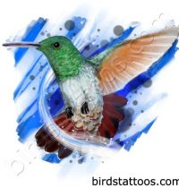 Colourful hummingbird tattoo