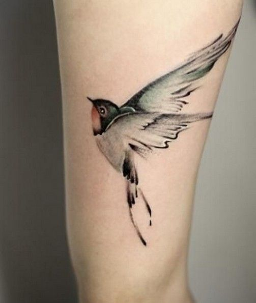 Calf tattoo with bird