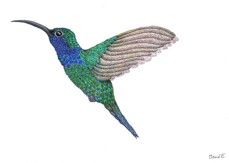 Green hummingbird tattoo design