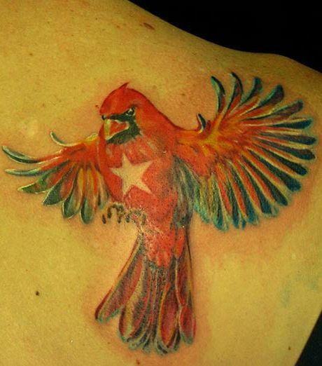 Red parrot with star tattoo