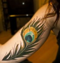 Tattoo with colourful feather
