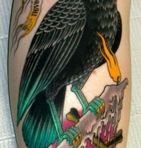 Black magpie on candle tattoo