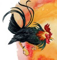 Black rooster tattoo design