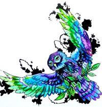 Colourful owl tattoo design