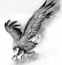 Eagle in attack design tattoo