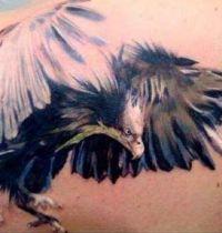 Eagle wings tattoo