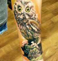 Hand tattoo with brown owl