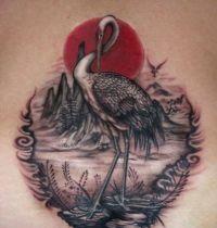 Heron and sun tattoo