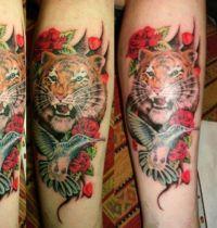 Hummingbird and tiger tattoo