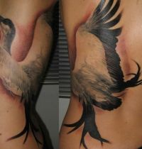 Bird tattoo back
