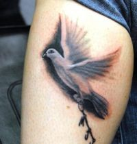 Leg tattoo with dove