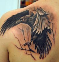 Black magpie and tree tattoo