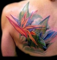 Paradise flower with bird tattoo
