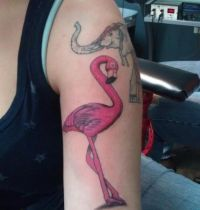 Pink pelican tattoo on arm