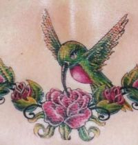 Roses and hummingburd tattoo