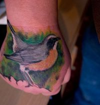Yellow and grey robin tattoo