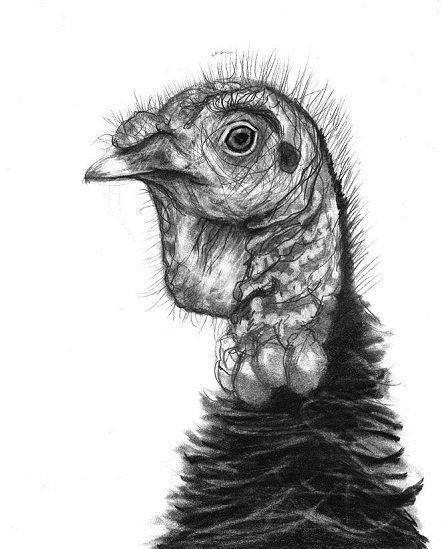 Turkey head tattoo design
