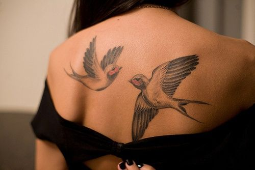Swallows tattoo on back