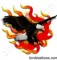 Black eagle in fires tattoo design