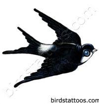 Black swallow tattoo design