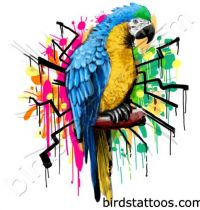 Blue and yellow parrot tattoo design